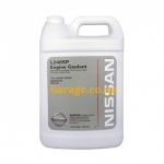 Nissan Long Life Coolant Concentrate -80C 3,78 л